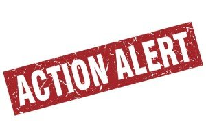 Act Now Contact Congress for SDOH